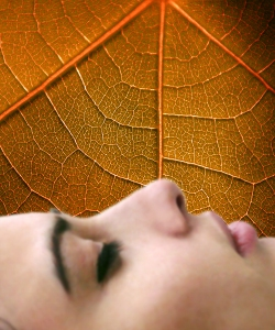 Insomnia treatment with hypnosis is effective.